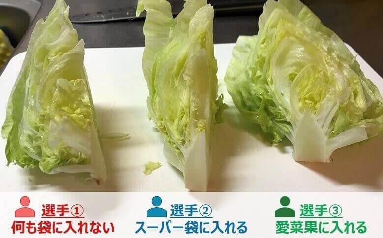 愛菜果(実験初日)
