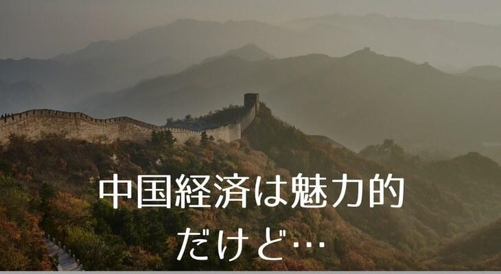 中国経済は魅力的。しかし…