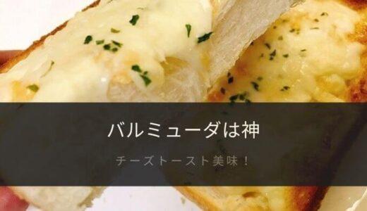 「バルミューダ」のトースターで焼いたチーズトーストが至福すぎる【口コミ】