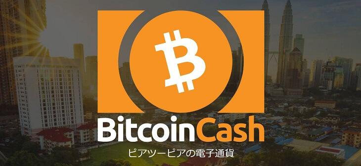 ビットコインキャッシュ イメージ画像(引用:公式ページ)