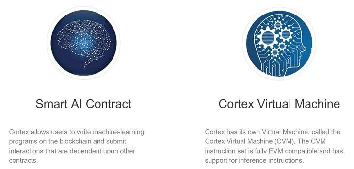 Cortexの特徴
