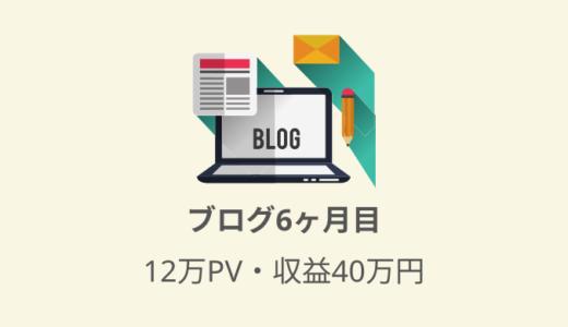 独自ドメインのブログを開始して半年経過!アクセス数(PV数)・収益等のデータまとめ