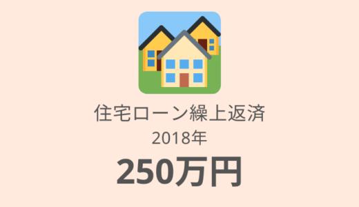 【2018年】住宅ローン繰上返済額は250万円。22ヶ月期間短縮&47万円利息軽減